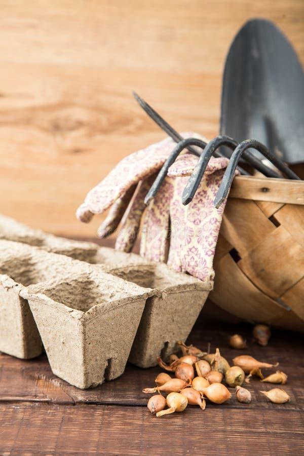 Preparando per il lavoro della molla, piantine Semi, vasi di torba, garde immagini stock