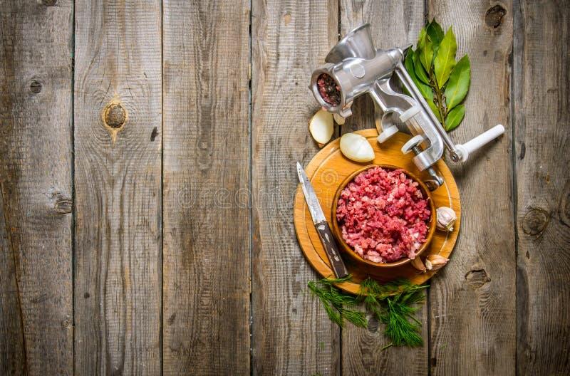 Preparated köttfärs i en bunke, en molar och kryddor med örter arkivbilder