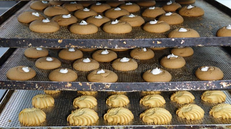 Preparation of cookies for baking. Cooking process in the kitchen.  stock images