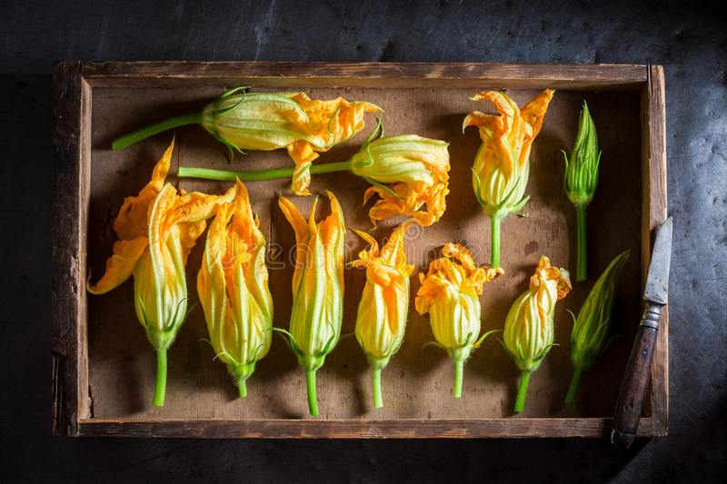 Preparation for crispy roasted zucchini flower made of pancake batter stock photography