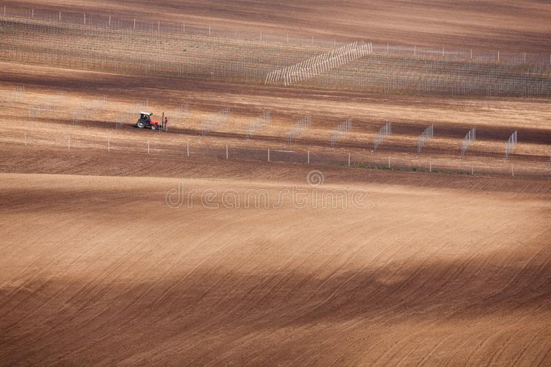 Plowed spring fields in South Moravia. Preparation of the field for planting young grapes. Layout and installation of poles with the help of a tractor in the royalty free stock images