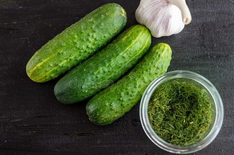 Preparation of pickled cucumbers stock photography