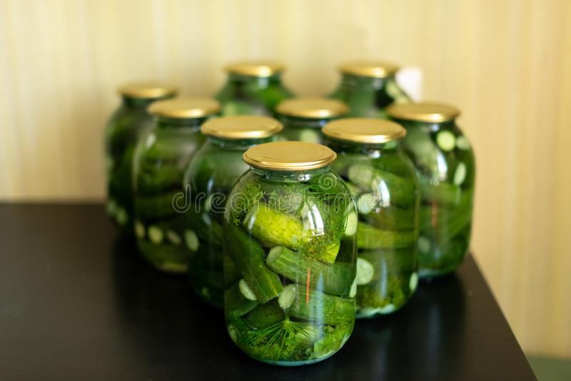 Preparation for pickling cucumbers. Preservation. Selective focus.  stock image