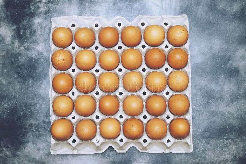 Close up whole eggs in box. raw Chicken egg many. soft focus royalty free stock image