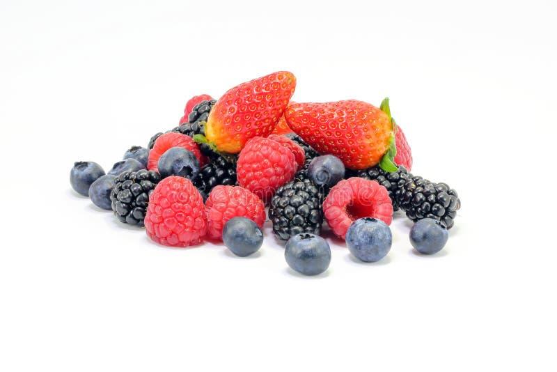 Preparato della frutta del mirtillo della fragola del lampone di Blackberry immagini stock libere da diritti