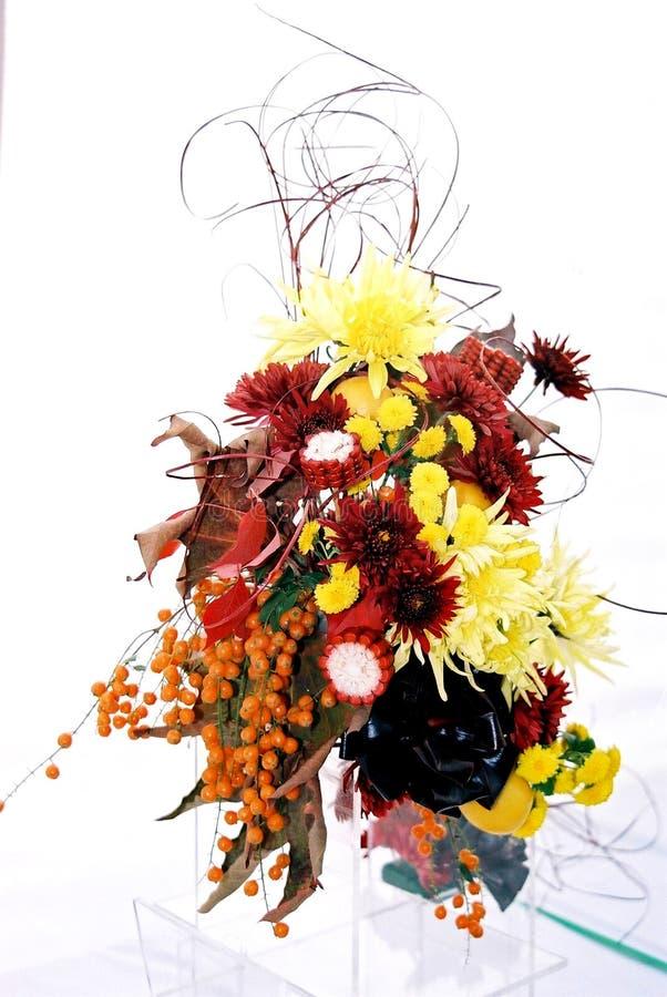 preparaty kwiat zdjęcie stock