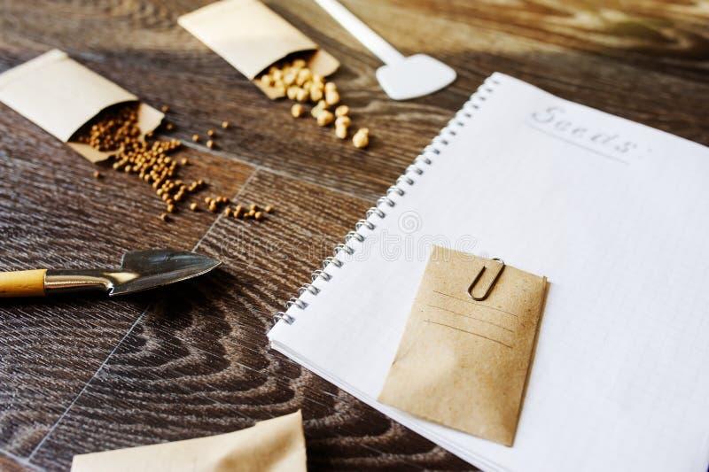 preparazione del giardino della molla per la semina dei semi di verdure immagini stock