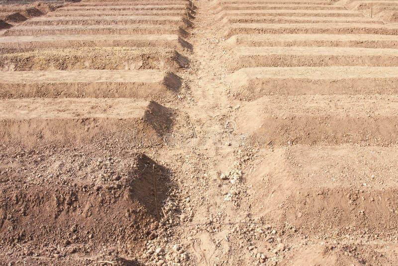 Preparazione di suolo per la piantatura della verdura fotografia stock libera da diritti