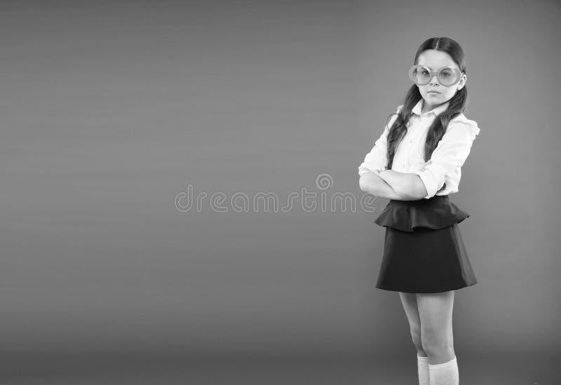 Prepare kid first school day. Schoolgirl cute ponytails. Excellent pupil concept. Girl wear school uniform orange stock images