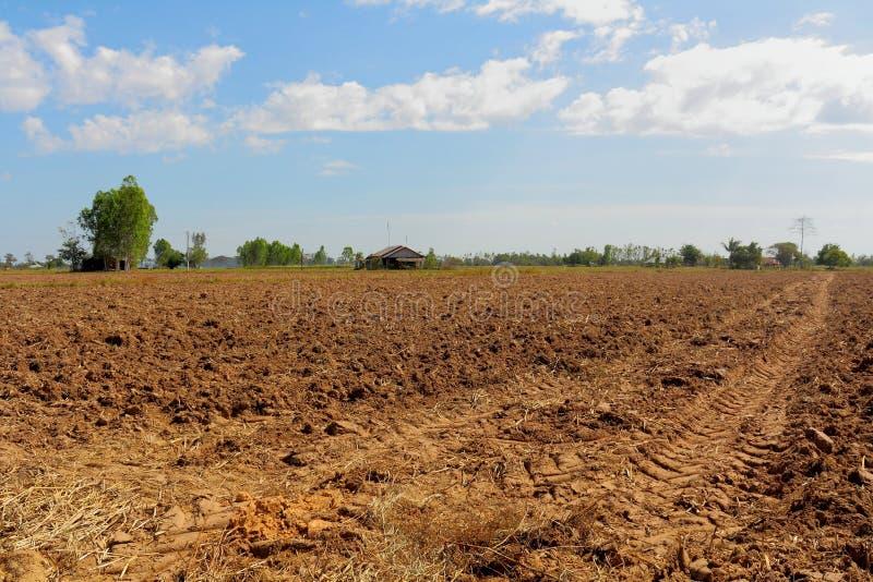 Prepare a plantação. imagens de stock royalty free