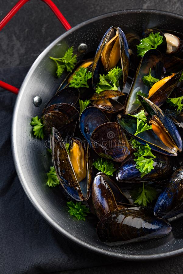 Prepared Mussels in Pan with Parsley, Top View stock photography