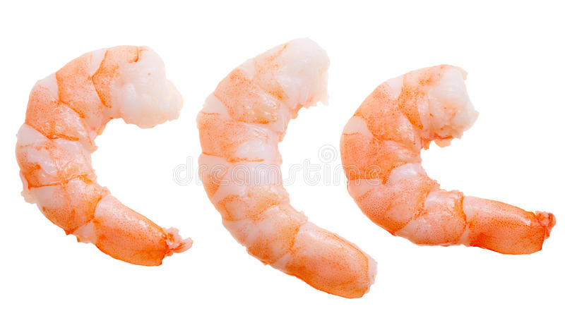 Prepared shrimp isolated. On a white background stock image