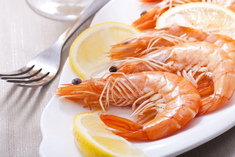 Prepared shrimps. With sliced lemon stock photography