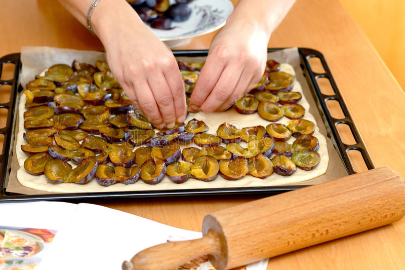 Preparing, baking plum cake. Placing plums on dough stock photography
