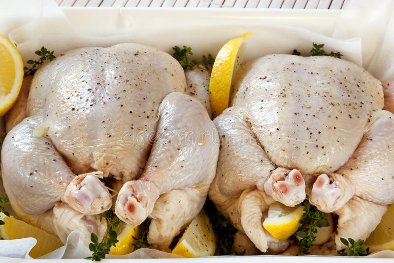 Download Preparing Chickens For Roasting Stock Image - Image: 19136209