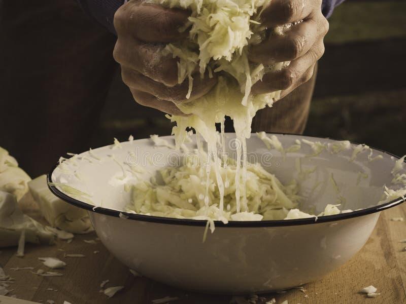 Preparing crunchy, tangy homemade sauerkraut royalty free stock photography