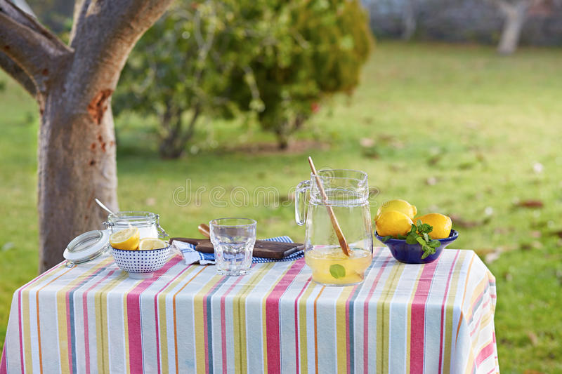 Preparing homemade lemonade in garden. Table with stripped cloth stock images