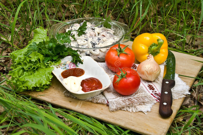 Preparing kebab. Ingredients for a barbecue: meat, vegetables, sauce stock photo