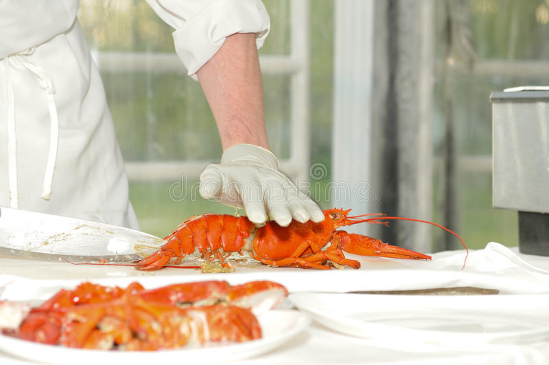Download Preparing lobsters stock image. Image of service, food - 14248579