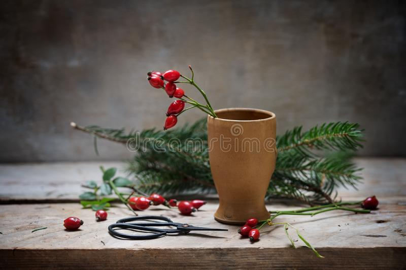 Preparing natural christmas decoration with rose hips in a stone stock images