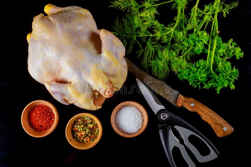 Preparing raw chicken. Whole chicken in with herbs ready for spices for barbecue royalty free stock photos