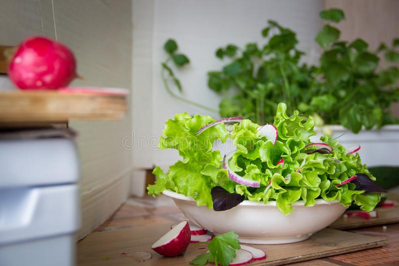 Preparing salad at home with radish, lettuce,red onion and basil leaves. Diet vegetarian, urban gardening food concept.  royalty free stock photos
