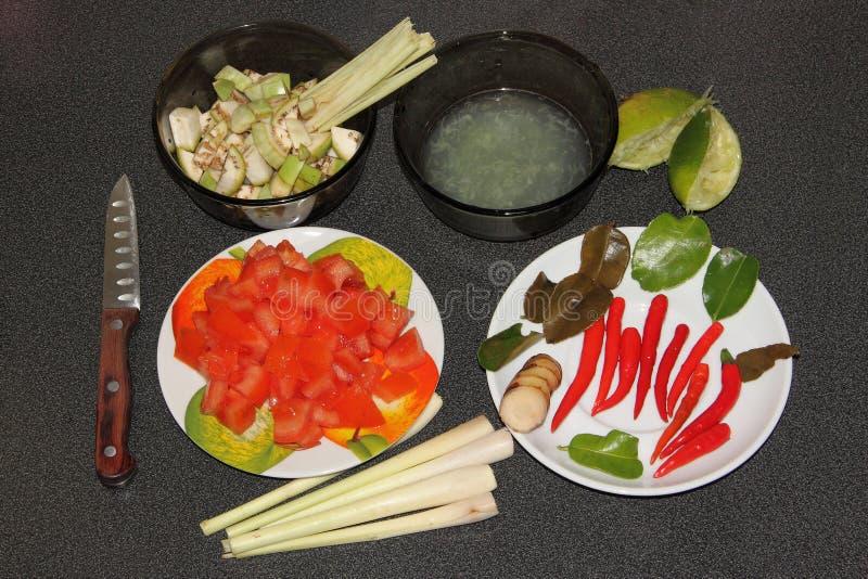 Preparing to cook Tom Kha Gai soup royalty free stock image