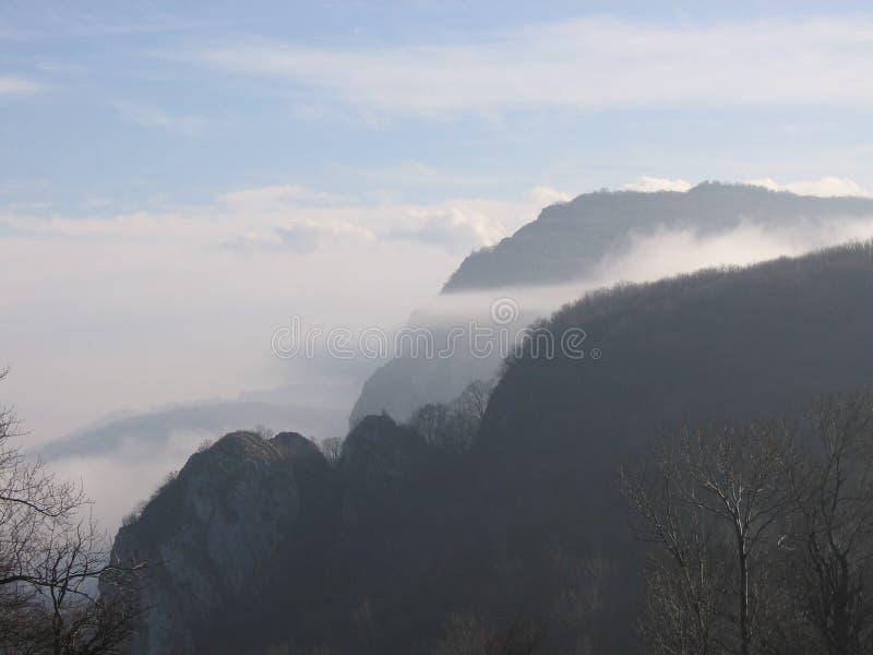 Prerasts Vratna в Сербии стоковое изображение