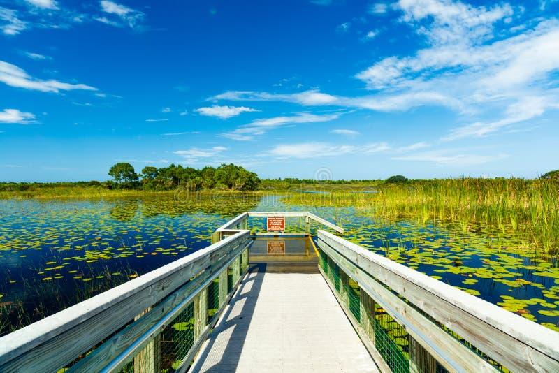 Prerogativa di natura di Florida fotografie stock libere da diritti