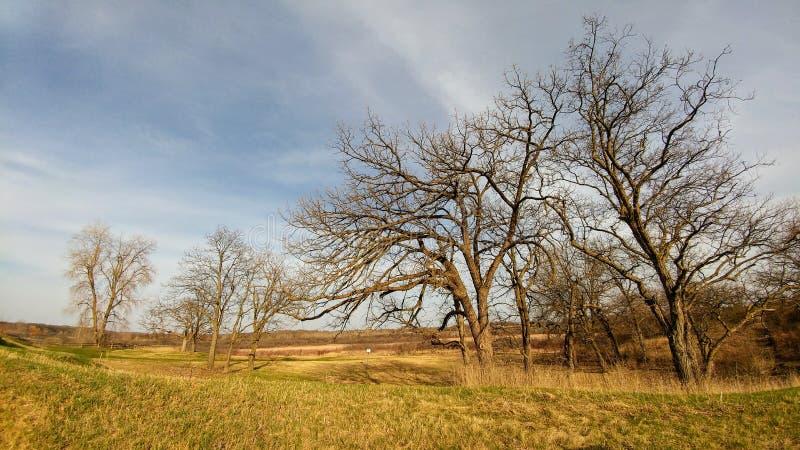 Prerogativa di natura di quattro stagioni - il lago Lemano, WI immagine stock libera da diritti
