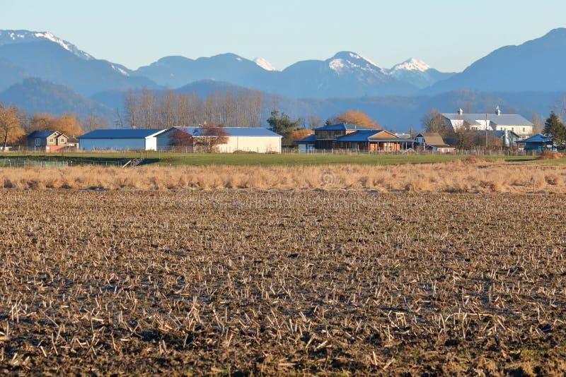 Preryjna społeczność miejska w Rolniczym regionie zdjęcie royalty free