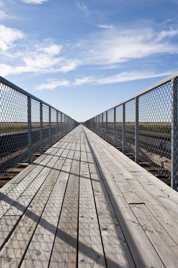Preryjny stopa most obrazy stock
