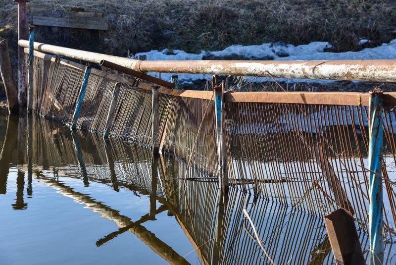 Presa improvisada cazadores furtivos en el río al frezar pescados foto de archivo libre de regalías