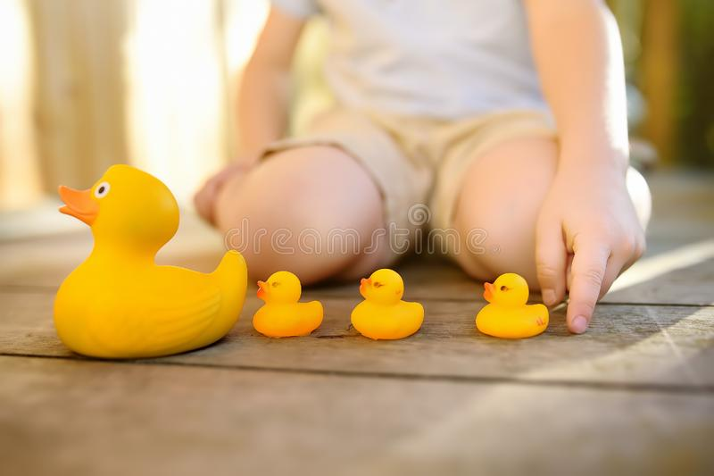 Preschooler child learns to count with toy ducklings stock image