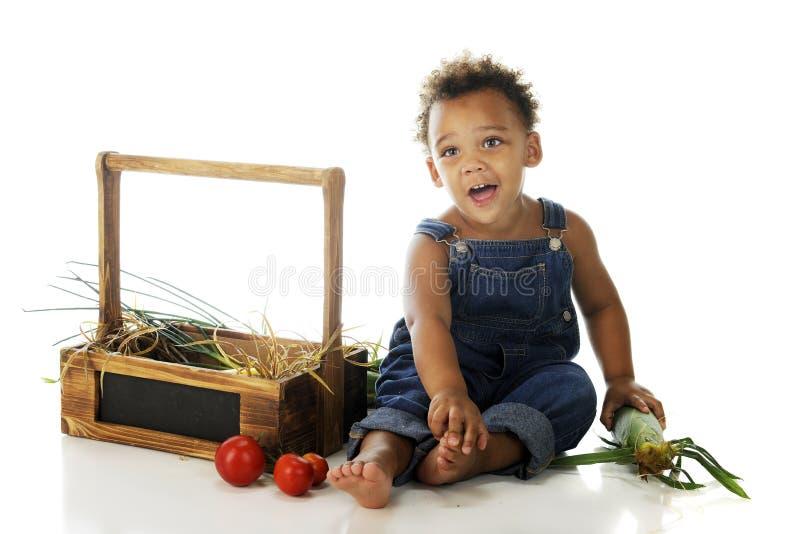 Preschooler med trädgårds- Veggies arkivfoton