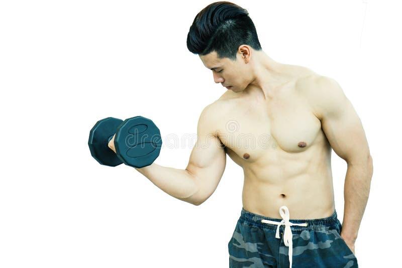 Presentación asiática formada aptitud del hombre del deporte del músculo foto de archivo libre de regalías