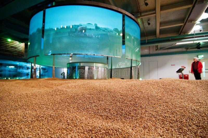 Visualización de la agricultura en la tienda de Guinness imagen de archivo