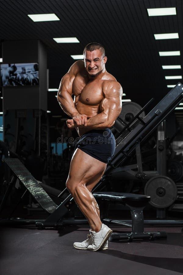 Presentación modelo de la aptitud atlética muscular del culturista fotografía de archivo