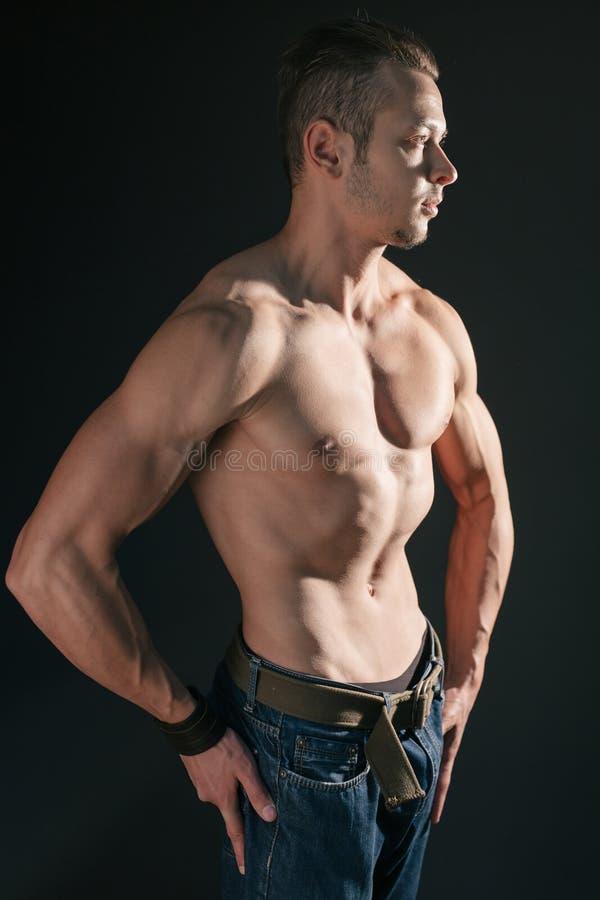 Presentación muscular del modelo imagen de archivo