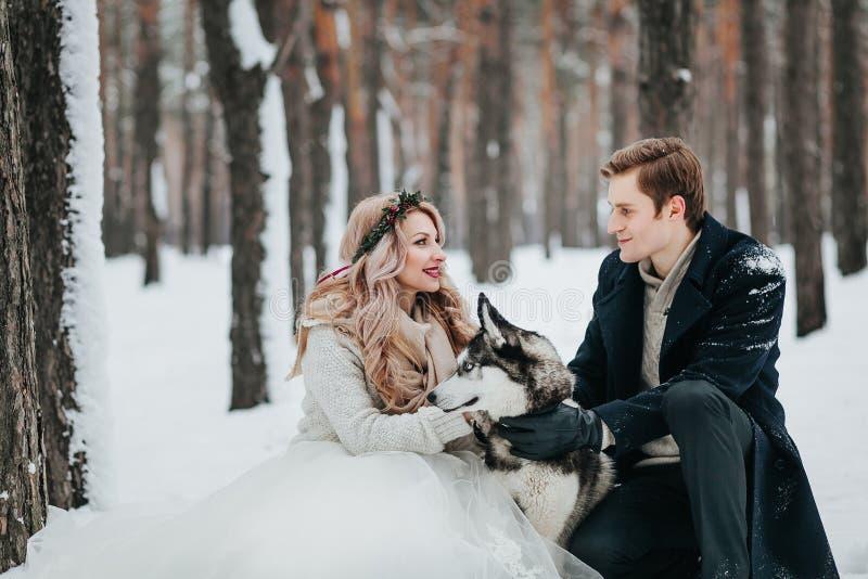 Presentan a la novia y al novio con el husky siberiano en el fondo de las ilustraciones nevosas del bosque foto de archivo