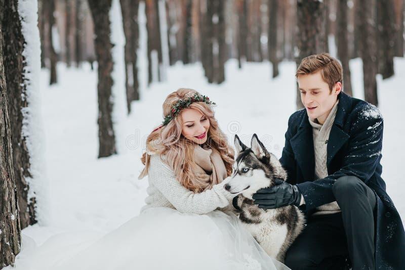 Presentan a la novia y al novio con el husky siberiano en el fondo de las ilustraciones nevosas del bosque fotos de archivo