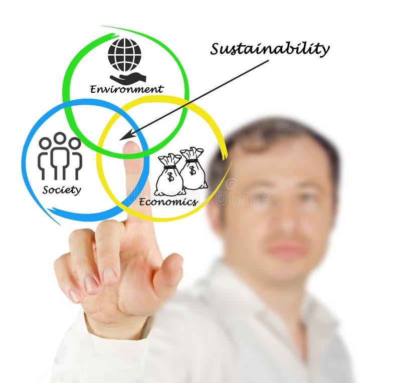 Presentatie van diagram van duurzaamheid royalty-vrije stock foto