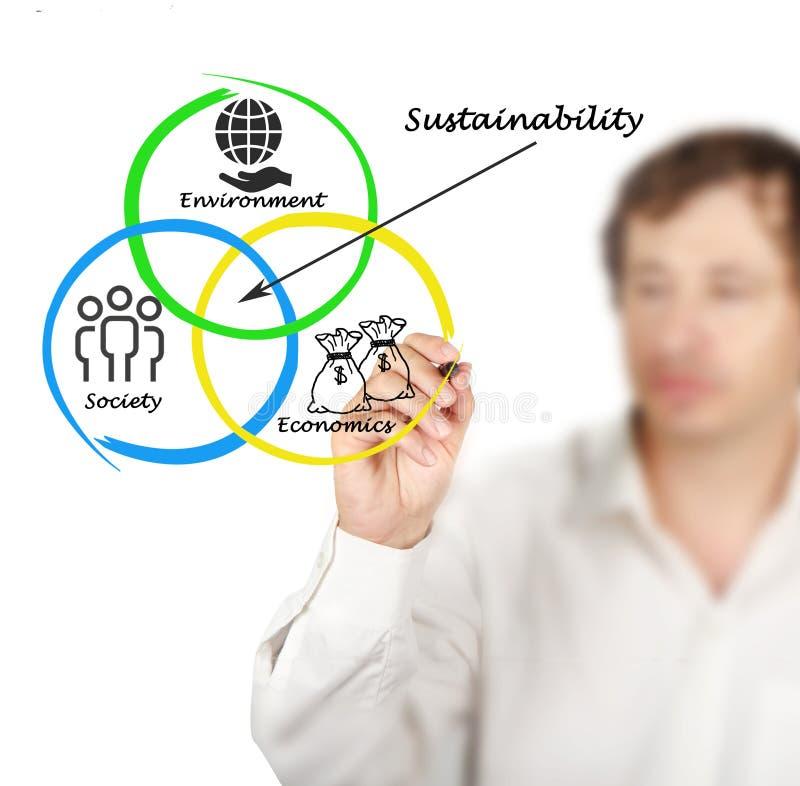 Presentatie van diagram van duurzaamheid royalty-vrije stock fotografie