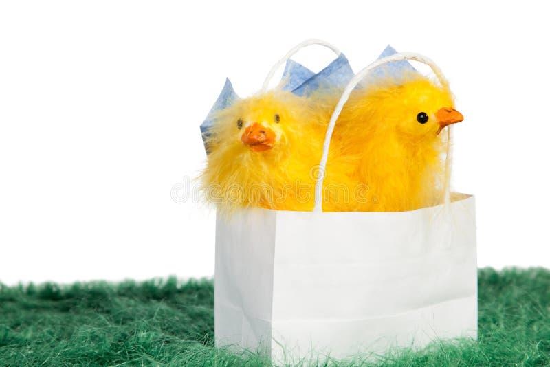 Presente de Easter imagem de stock