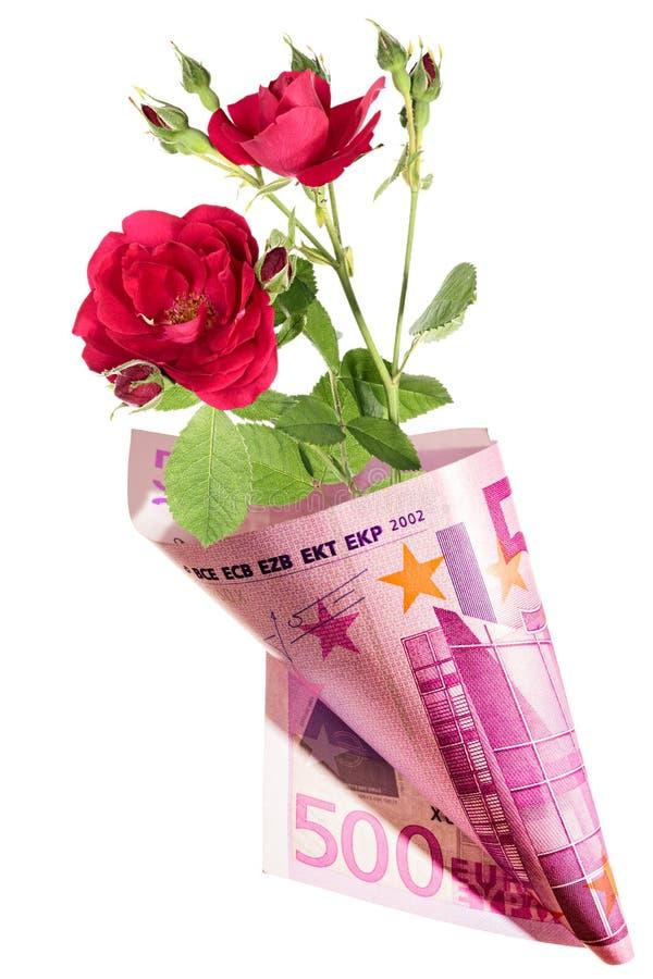 Presente engraçado, ramalhete das flores da rosa do vermelho envolvidas no euro fotografia de stock