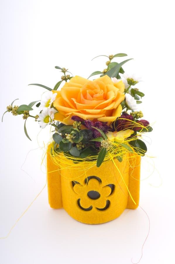 Presente pequeno da flor imagens de stock