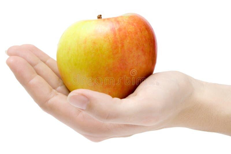 presentera för äpple fotografering för bildbyråer
