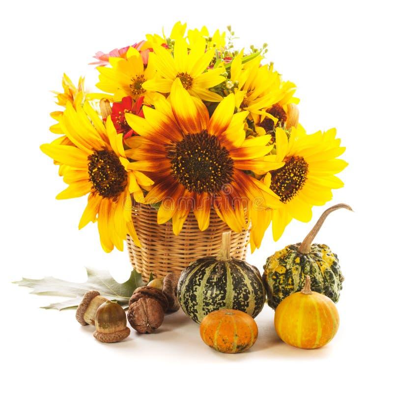 Presentes do outono foto de stock royalty free