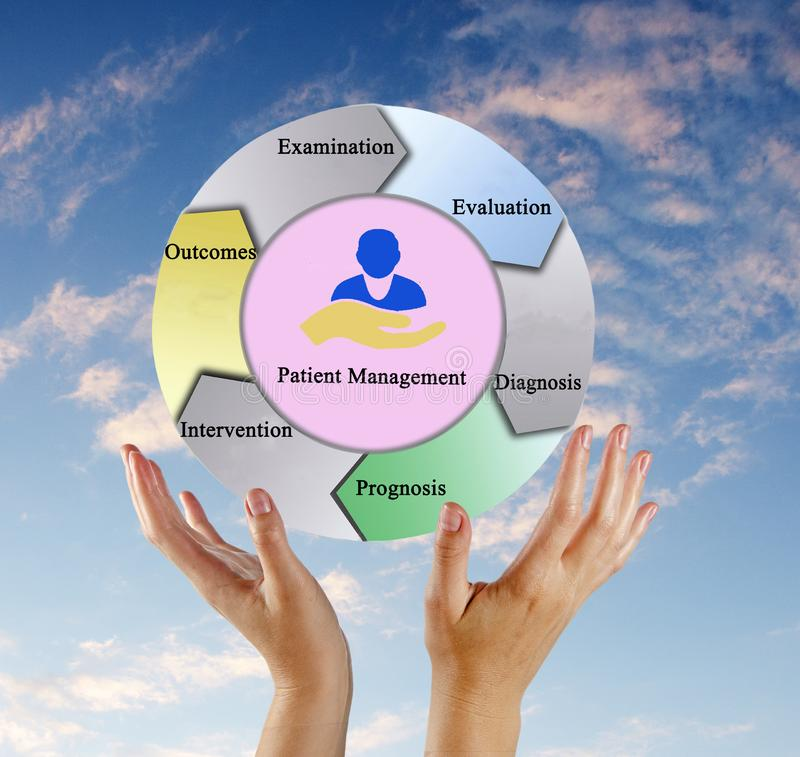 Presenting Process of Patient Management. Woman Presenting Process of Patient Management stock photos