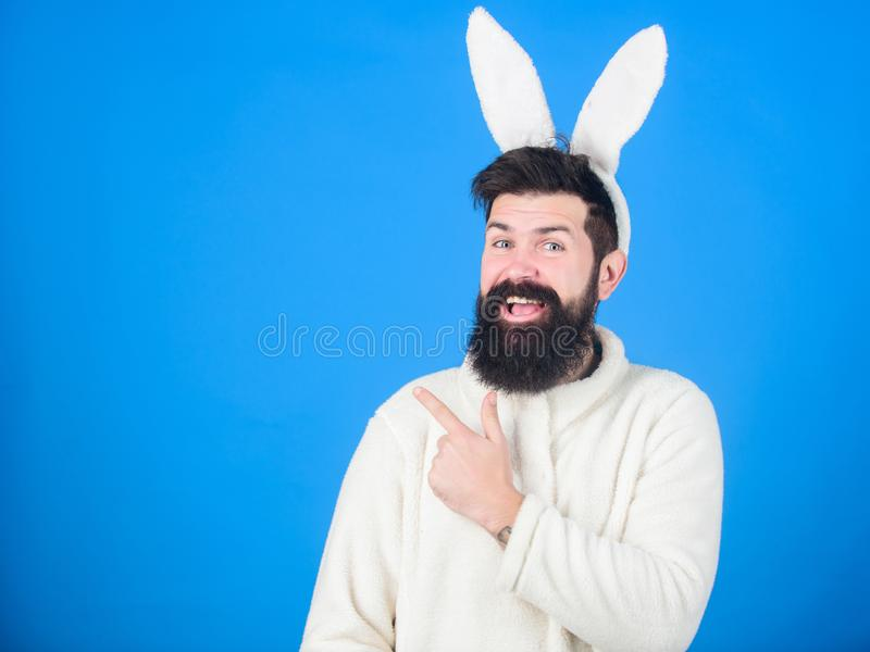 Presenting your product. Easter hare pointing finger aside. Bearded man in rabbit costume. Hipster wearing long rabbit stock photography